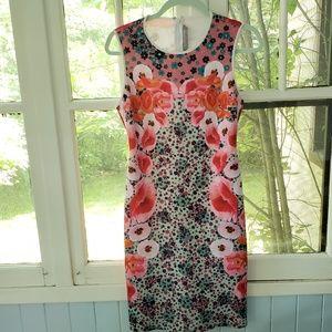 Clover Canyon Floral Neoprene Dress